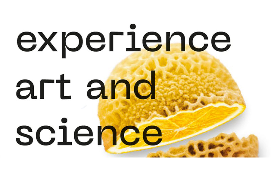SICHH_Experience Science and Art_900x600